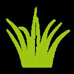 Turf-Health-fertilization-and-weed-control-program