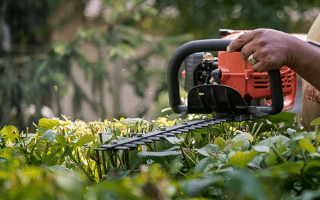Residential hedge trimming in Lake In The Hills, IL.  Service areas include Crystal Lake, Cary, Lake In The Hills, Algonquin, and Huntley.